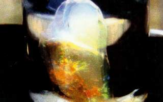 The Moby Dick opal